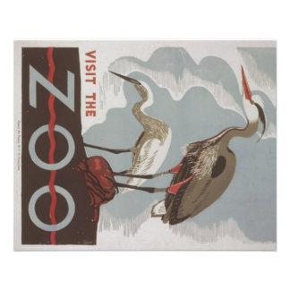 WPA - el parque zoológico Flyer Personalizado