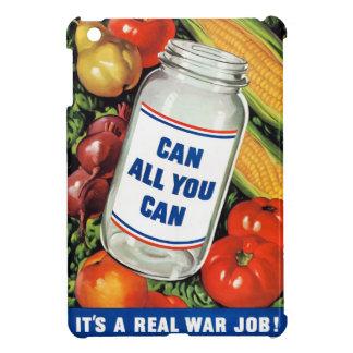 WPA- pueden todos lo que usted puede