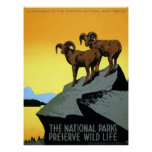 WPA Vintage National Parks Wildlife Travel Poster