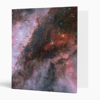 WR 22 and Eta Carinae regions of the Carina Nebula 3 Ring Binder