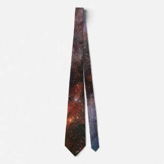 WR 22 and Eta Carinae regions of the Carina Nebula Neck Tie