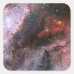 WR 22 y regiones de Eta Carinae de la nebulosa de Pegatina Cuadrada