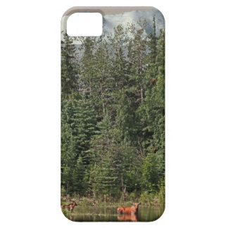 Wrangell-St Elias - The Last Frontier iPhone 5 Cover
