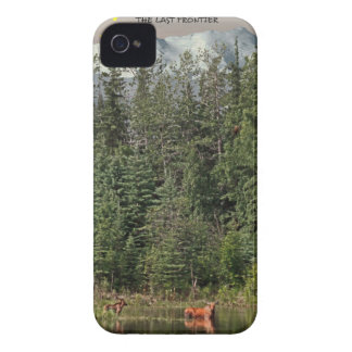 Wrangell-St Elias - The Last Frontier iPhone 4 Case-Mate Cases