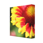 Wrapped botanical canvas flower photography print gallery wrap canvas