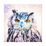 Wrapped Canvas Art - Owl in Mixed Media Canvas Print