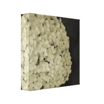 Wrapped canvas flower photography print artwork
