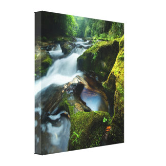 Wrapped Canvas of beautiful Chattooga River Gallery Wrap Canvas