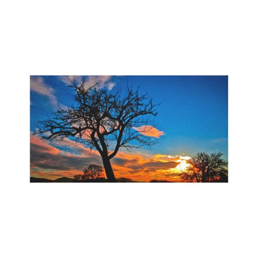 """Wrapped Canvas Photo 14"""" x 11"""", 1.5"""", Single Stretched Canvas Prints"""