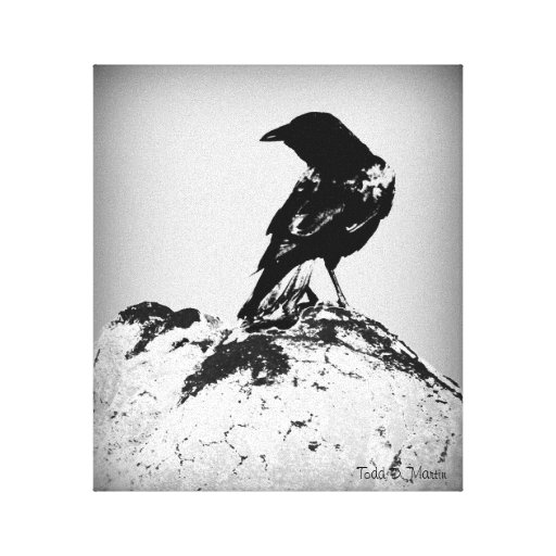 "Wrapped Canvas Print of ""The Crow"""