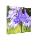 Wrapped Canvas Print, Purple Flowers