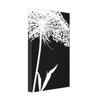 Wrapped Canvas: White on Black Queen Anne's Lace Canvas Prints