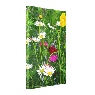 Wrapped Canvas: Wildflowers Canvas Print
