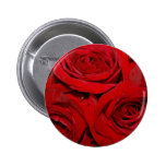 Wrapped in Roses Button