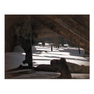 Wreck Of The Maheno Postcard