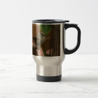 Wren bird travel mug