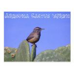 Wren de cactus de Arizona Postal
