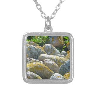 Wren Jewelry