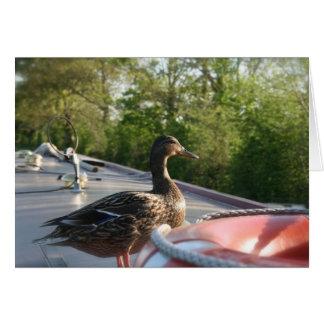 Wrenbury Duck Llangollen Canal Notecard Greeting Card