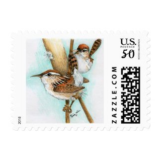 Wrens and Cat-Tail Postage