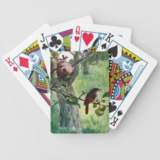 Wrens de casa que jerarquizan en un manzano baraja cartas de poker