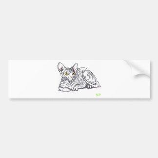 wrinkled cat car bumper sticker