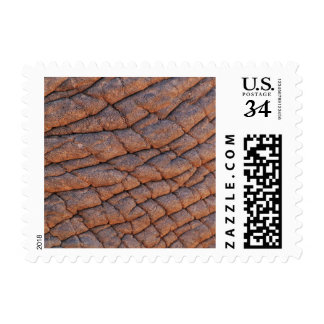 Wrinkly Elephant Skin Texture Template Postage