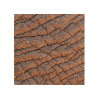 Wrinkly Elephant Skin Texture Template Wood Wall Art