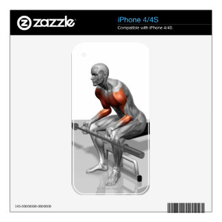 Wrist Curls 2 Skins For The iPhone 4S