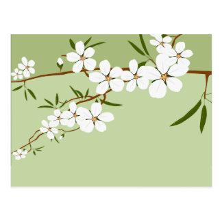 Writable Place Card Dogwood Flowers Postcard