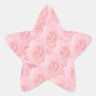 Write-on Light-shade RedRose Flowers Star Stickers