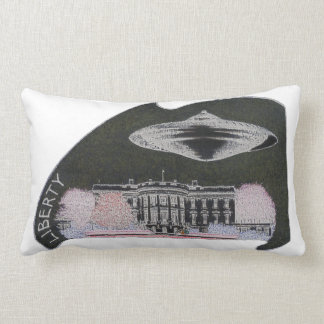 Write the captions to go with these pictures pillow