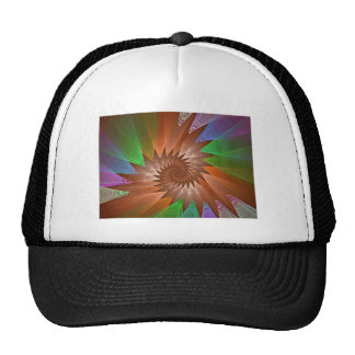 ws__whirling_spiral_tmp gorras de camionero