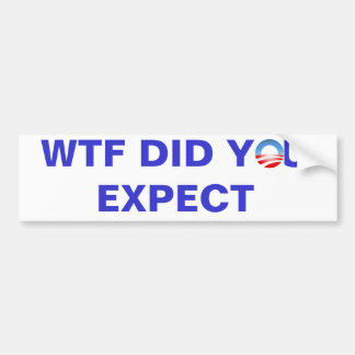 WTF DID YOU EXPECT CAR BUMPER STICKER