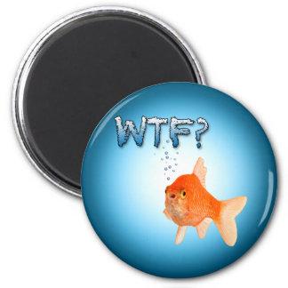 WTF? fish magnet