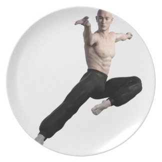 Wu Shu Form coming down to the front Melamine Plate