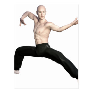 Wu Shu Squat Form Looking Left Postcard