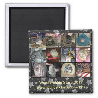 Wunderchins 2012 magnet