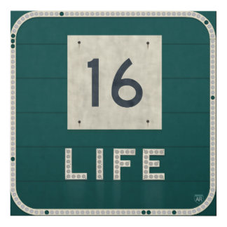 WV Route 16 Life Panel Wall Art