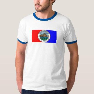 WW 15 flag T-Shirt
