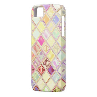 WWB Customizable iPhone 5 Covers