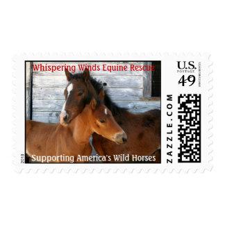 WWER Postage Stamp - Customized