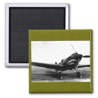 WWII Flying Tigers Curtiss P-40 Fighter Plane Magnet