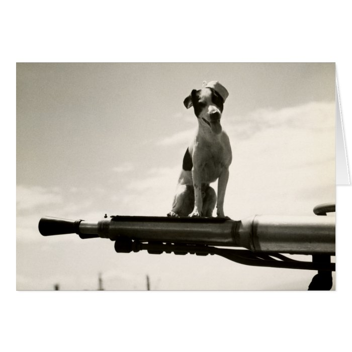 WWII USCG Dog named Kelly Card