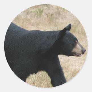 www.blackbearsite.com classic round sticker