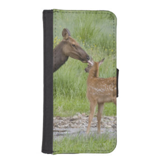 WY, Yellowstone National Park, Elk calf and iPhone SE/5/5s Wallet Case