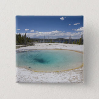 WY, Yellowstone National Park, West Thumb Geyser Button