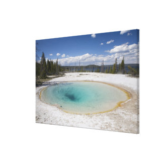 WY Yellowstone National Park West Thumb Geyser Gallery Wrapped Canvas