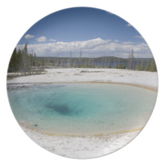 WY, Yellowstone National Park, West Thumb Geyser Plate