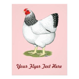 Wyandotte Columbian Hen Flyer
